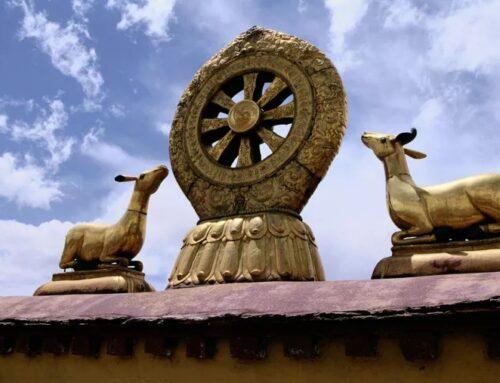 Se você quiser praticar o dharma significa que você quer atingir a iluminação